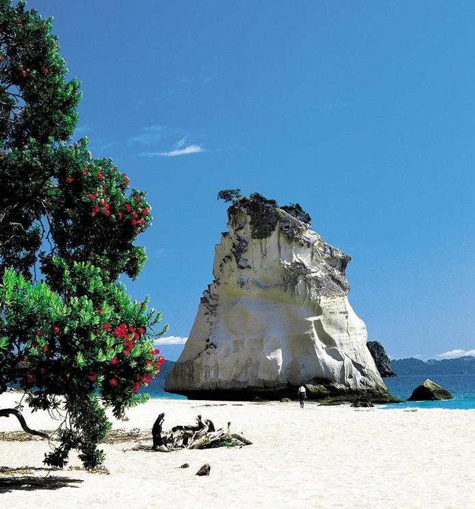 Cathedral Cove en Coromandel