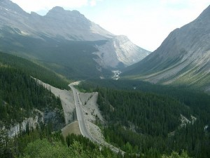 Panoramica Icefields Parkway