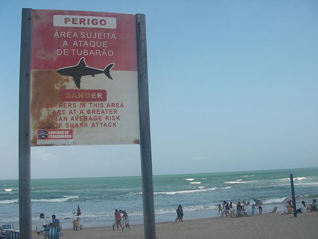 Playas peligrosas por sus tiburones