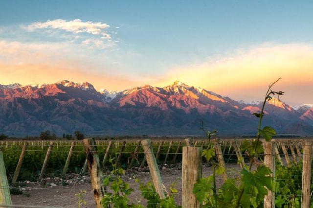 Ruta del vino en Mendoza (Argentina)