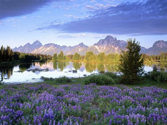 Teton Wyoming