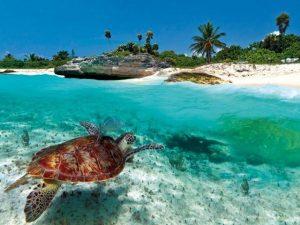 Islas preciosas del Caribe