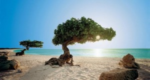 Playas del Caribe